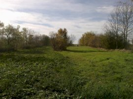 Vanzare  terenuri constructii  2400 mp Timis, Folea  - 4900 EURO