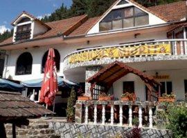 Regim hotelier  hoteluri/pensiuni Sibiu, Rasinari