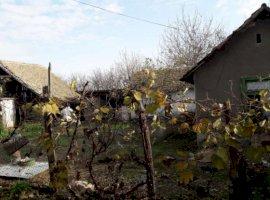 Vanzare  casa  3 camere Timis, Ghilad  - 25500 EURO