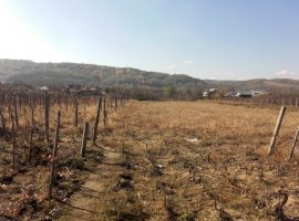Vanzare  terenuri constructii Valcea, Creteni  - 10500 EURO