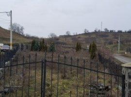 Vanzare  terenuri constructii Mures, Santana de Mures  - 38000 EURO