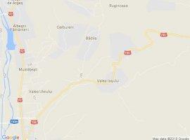 Vanzare  terenuri constructii  1600 mp Arges, Valea Iasului  - 0 EURO