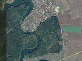 Vanzare  terenuri constructii  5000 mp Ilfov, Branesti  - 0 EURO