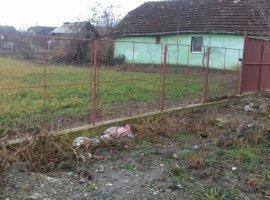 Vanzare  terenuri constructii Timis, Periam  - 10000 EURO