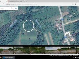 Vanzare  terenuri agricol Dambovita, Voinesti  - 2098 EURO