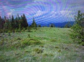 Vanzare  terenuri agricol Cluj, Sacuieu  - 4 EURO