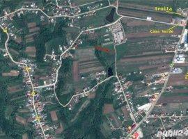 Vanzare  terenuri constructii  923 mp Arges, Albota  - 0 EURO