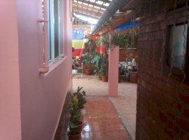 Vanzare  casa  3 camere Timis, Jimbolia  - 87000 EURO