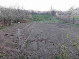 Vanzare  terenuri constructii  7000 mp Valcea, Vladesti  - 0 EURO