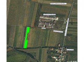 Vanzare  terenuri constructii  8000 mp Sibiu, Sura Mica  - 40000 EURO