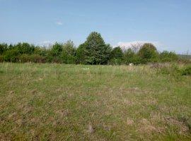 Vanzare  terenuri agricol Arges, Maracineni  - 35500 EURO