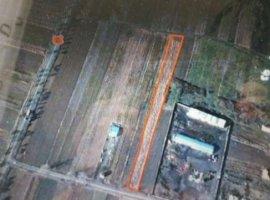 Vanzare  terenuri constructii  5300 mp Timis, Lugojel  - 0 EURO