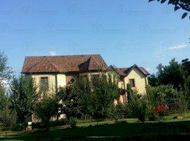 Vanzare  casa  5 camere Ilfov, Dascalu  - 125000 EURO