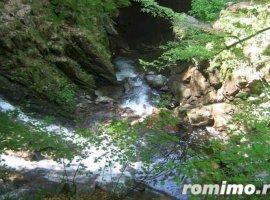 Vanzare  terenuri constructii  700 mp Timis, Nadrag  - 5000 EURO