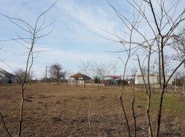 Vanzare  terenuri constructii Constanta, Comana  - 7000 EURO