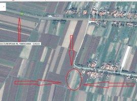 Vanzare  terenuri constructii  3500 mp Timis, Belint  - 11000 EURO