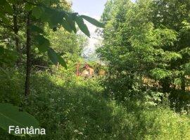 Vanzare  terenuri constructii  1800 mp Prahova, Provita de Jos  - 0 EURO