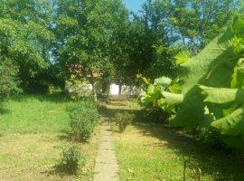 Vanzare  casa  5 camere Mures, Toldal  - 95000 EURO