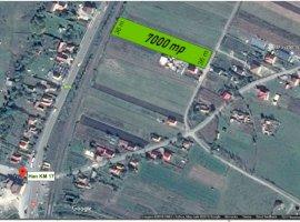 Vanzare  terenuri constructii  7000 mp Cluj, Jucu de Mijloc  - 112000 EURO