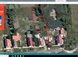 Vanzare  terenuri constructii Timis, Sacalaz  - 0 EURO