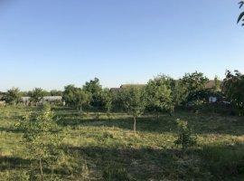 Vanzare  casa  5 camere Arad, Macea  - 55000 EURO