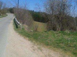 Vanzare  terenuri constructii  4600 mp Cluj, Capusu Mare  - 7450 EURO