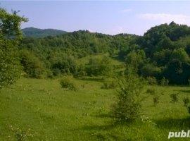 Vanzare  terenuri constructii  1000 mp Valcea, Vladesti  - 12000 EURO
