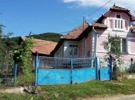 Vanzare  casa  3 camere Mures, Bagaciu  - 15500 EURO