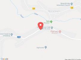 Vanzare  terenuri constructii  3500 mp Dambovita, Niculesti  - 9800 EURO