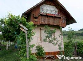 Vanzare  terenuri constructii  12.7 ha Sibiu, Medias  - 0 EURO