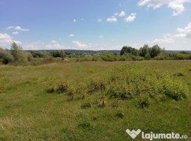 Vanzare  terenuri constructii  107.2 ha Arges, Darmanesti  - 2 EURO