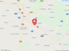 Vanzare  terenuri agricol  22 ha Timis, Lugojel  - 12100 EURO