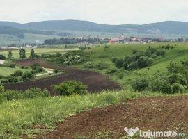Vanzare  terenuri agricol  50 ha Brasov, Feldioara  - 40000 EURO