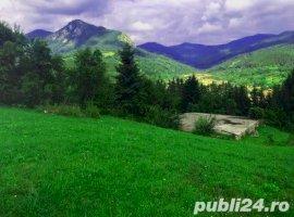 Vanzare  terenuri constructii  245 mp Arges, Dragoslavele  - 51000 EURO