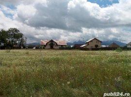 Vanzare  terenuri constructii  600 mp Brasov, Zizin  - 14400 EURO