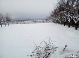 Vanzare  terenuri constructii Arges, Maracineni  - 40000 EURO