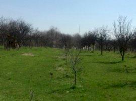 Vanzare  terenuri constructii Arges, Moraresti  - 12000 EURO