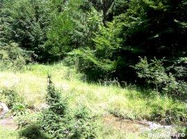 Vanzare  terenuri constructii  4200 mp Sibiu, Rasinari  - 0 EURO