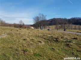 Vanzare  terenuri constructii  10000 mp Arges, Curtea de Arges  - 0 EURO