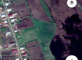 Vanzare  terenuri constructii  2800 mp Iasi, Boureni  - 18000 EURO