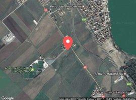 Vanzare  terenuri constructii  33.3 ha Constanta, Ovidiu  - 0 EURO