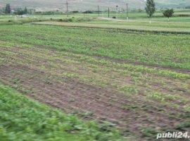Vanzare  terenuri constructii  2500 mp Dambovita, Nucet  - 64000 EURO
