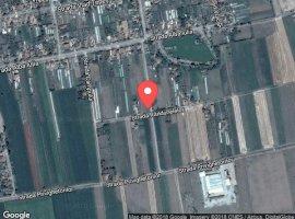 Vanzare  terenuri constructii  1800 mp Arad, Curtici  - 0 EURO