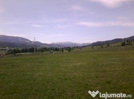 Vanzare  terenuri constructii  7982 mp Suceava, Saru Dornei  - 0 EURO