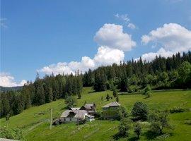 Vanzare  terenuri constructii Suceava, Mestecanis  - 39000 EURO