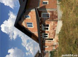 Vanzare  casa  6 camere Timis, Beregsau Mare  - 69000 EURO