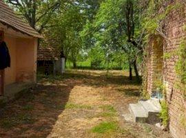 Vanzare  casa  3 camere Timis, Soca  - 22000 EURO
