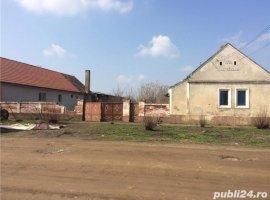 Vanzare  casa  3 camere Timis, Pesac  - 18000 EURO