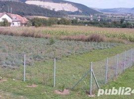 Vanzare  terenuri constructii Mures, Bogata  - 0 EURO